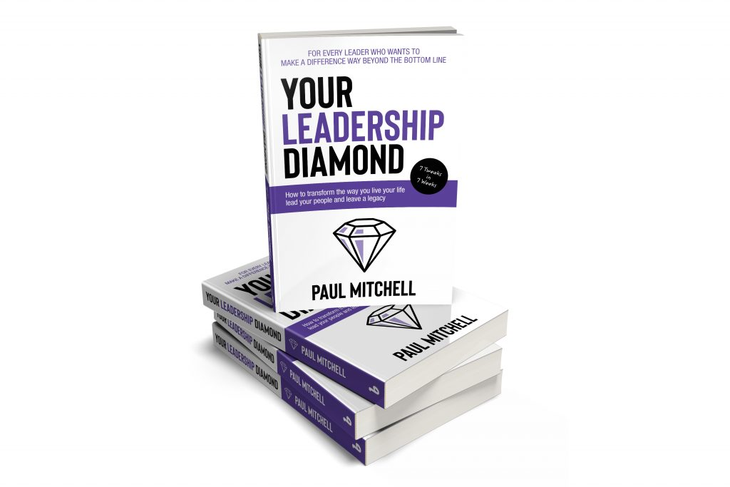 Your Leadership Diamond Stacked | Books on Leadership